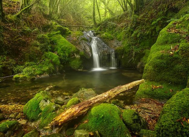 Sequeiros river waterfall