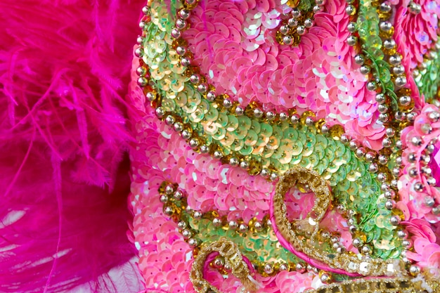 Sequins embroidery of colors and glitters for the carnival