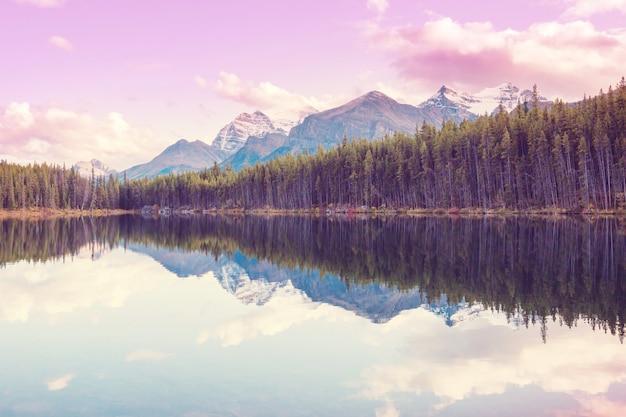 穏やかな海の岩の反射とカナダの山の湖のそばの穏やかなシーン。