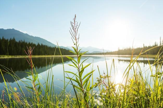알래스카의 툰드라에있는 평온한 호수
