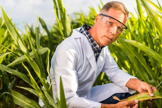 カメラを見て深刻な農学者