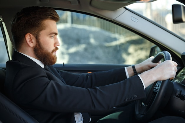 Serious bearded business man driving car