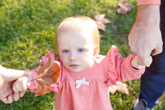 Serious infant looking at front and holding parents hands and dried maple leaf