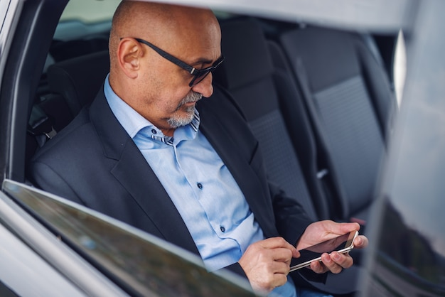 Serious senior businessman using smart phone for reading or writing message while sitting on backseat of his car.
