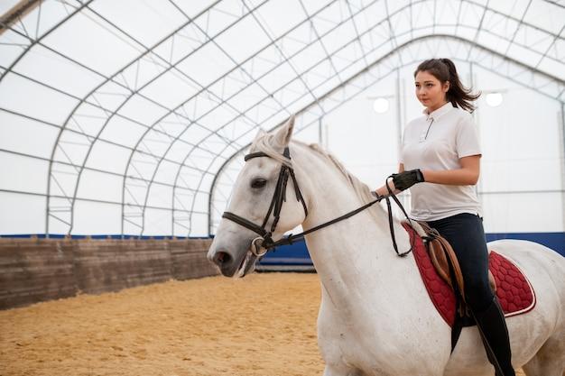 경기장에서 훈련하는 동안 흰색 순종 말을 타는 동안 똑바로보고 심각한 젊은 활동적인 여자