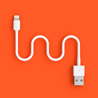 Serpentine shaped usb cable on a coral colored background.