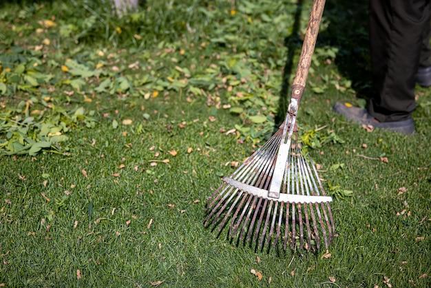 Rastrello in metallo seghettato per la pulizia del giardino