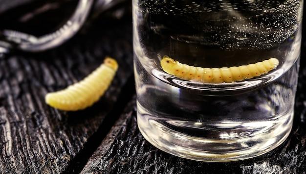 メスカル(またはメスカル)を含むいくつかのグラスは、元々オアハカ州からのエキゾチックなメキシコの飲み物である「幼虫または虫のテキーラ」として一般に知られています