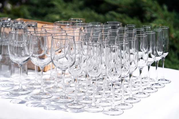 Set of blank empty wine glasses displayed in rows. preparation for the holiday.