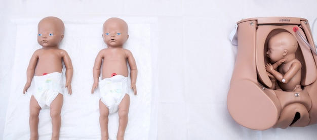 A set of children's dummies for doctors. mother of the mother's maternity head, practical research and preliminary treatment. medetsinskaya doll of a newborn lung disease. background