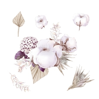 Set of cute cotton flowers branches and leaves. watercolor illustration