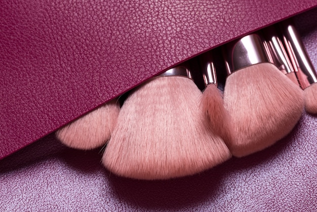 Set of different cosmetic brushed in leather bag