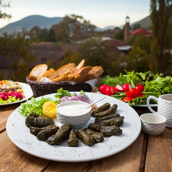 Set of different types of salads and stuffed grape leaves on a table with village on background. high angle view.