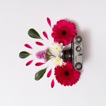 Set of flowers, foliage and vintage camera