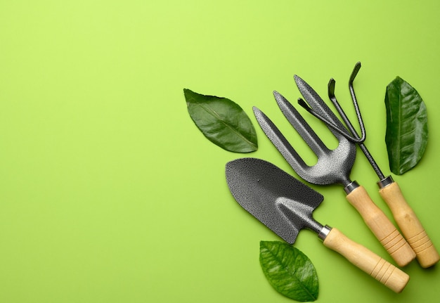 Set of garden tools with wooden handles on a green background, top view, copy space