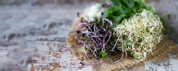 Set of microgreens on a wooden surface