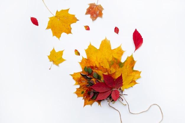白い背景の美しい秋の乾燥葉のセット。秋のコンセプト。秋の背景。フラット横たわっていた、トップビュー、コピースペース