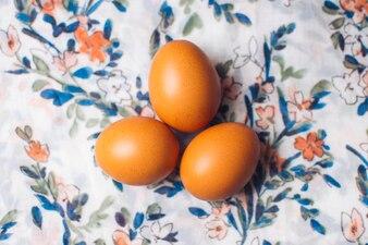 花の咲く材料に鶏の卵のセット
