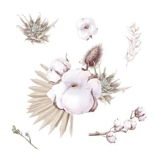 かわいい綿の花の枝と葉のセットです。水彩イラスト。