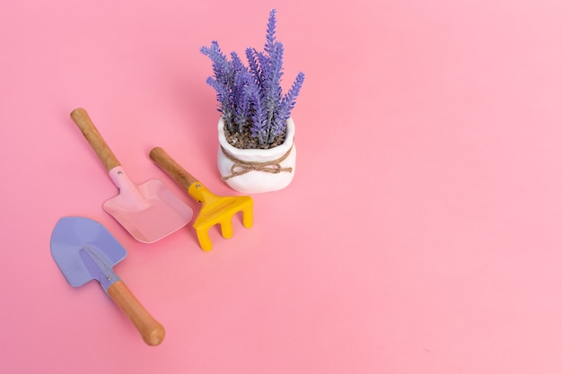 Набор оборудования для ухода за садом из трех садовых инструментов, лаванды в горшке, на розовом фоне
