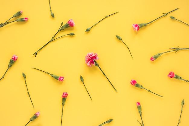 녹색 줄기에 신선한 꽃 세트