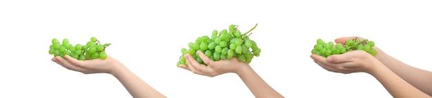 Набор зеленого винограда в руке, изолированные на белом фоне. фото дизайна баннера