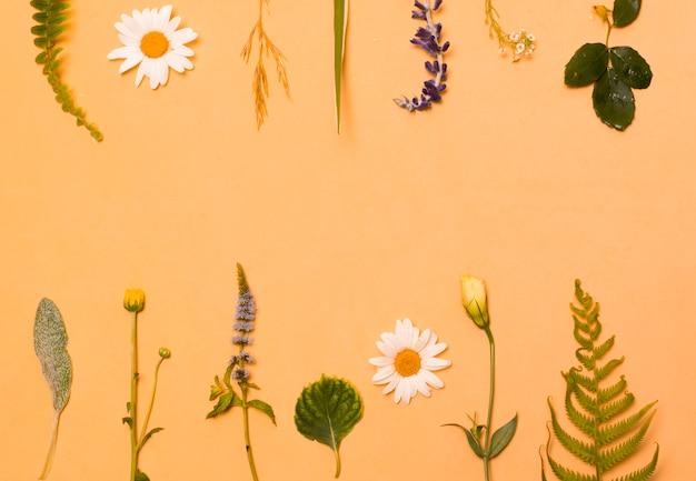 Набор зеленых листьев и цветов