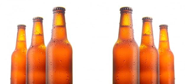 Набор из шести пивных бутылок, изолированных на белой стене