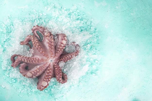 Набор различных свежих сырых морепродуктов