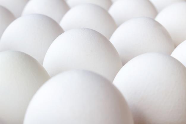 Набор белых куриных яиц крупным планом