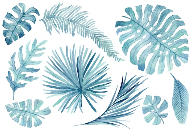 Set of pink and blue tropical leaves. jungle, botanical watercolor illustrations, floral elements, palm leaves, fern and others. hand drawn watercolor set of leaves and home plant