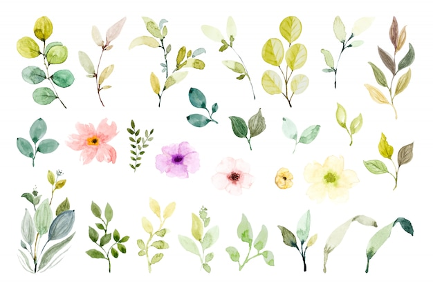 Set of watercolor design elements.