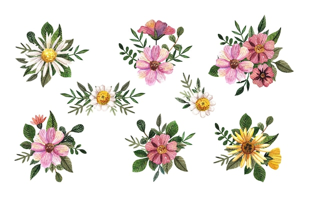 Set of the watercolor floral pressed arrangements. chamomile with green leaves. romantic dry wild flowers.