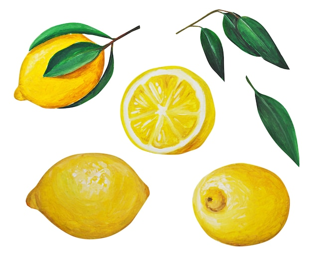 Set of watercolor lemons.