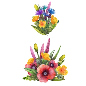 Set of watercolor wild wildflowers