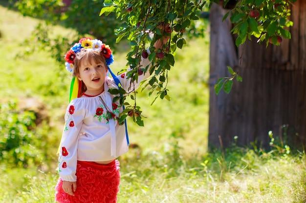 나뭇잎 배경에 대해 우크라이나 전통 화환 세트