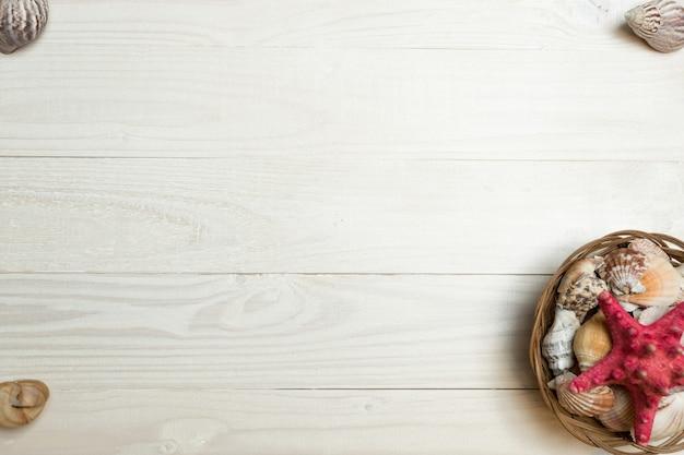 흰색 나무 판자에 조개와 불가사리를 설정합니다. 여름 사진을 위한 완벽한 프레임