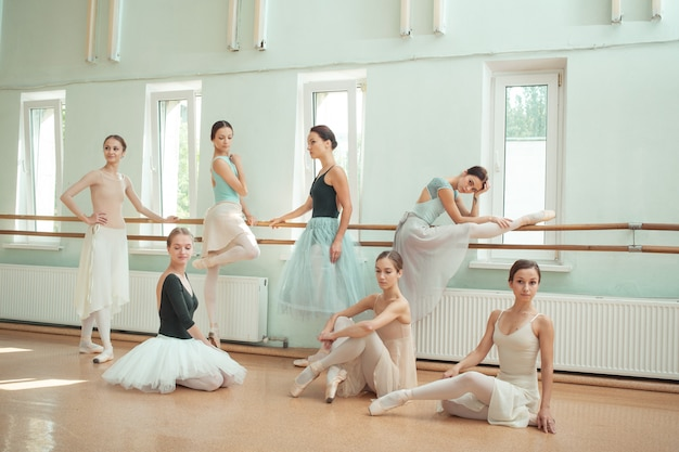 The seven ballerinas at ballet bar
