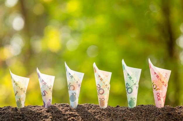 緑の自然の土壌で成長しているいくつかの中国の紙幣(1-100元)は、背景をぼかします。ビジネス成長コンセプト