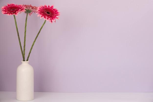 白い花瓶の青い表面にいくつかのガーベラ