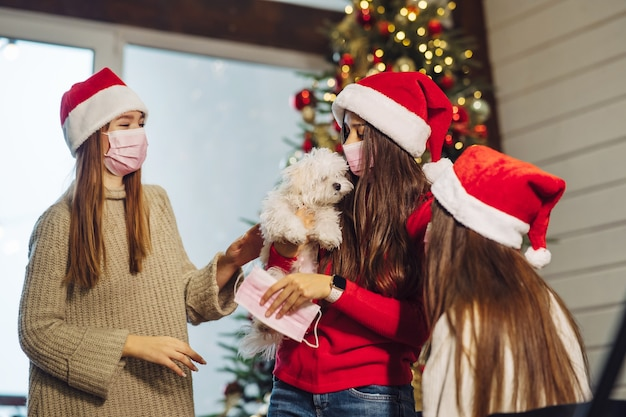 Several girls play with a small dog on new years eve at home.