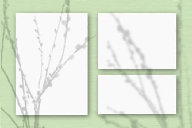 Несколько горизонтальных и вертикальных листов белой фактурной бумаги на фоне светло-зеленой стены. естественный свет отбрасывает тени от веток ивы. плоская планировка, вид сверху. горизонтальная ориентация