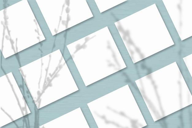 Несколько квадратных листов белой текстурированной бумаги на фоне сине-серой стены. мокап с наложением теней растений. естественный свет отбрасывает тени от веток ивы. горизонтальная ориентация