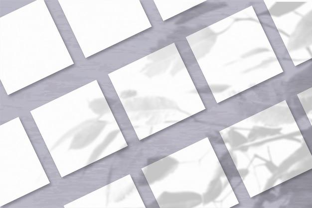 Несколько квадратных листов белой текстурированной бумаги на фоне серой стены. мокап с наложением теней растений. естественный свет отбрасывает тени от экзотического растения. горизонтальная ориентация