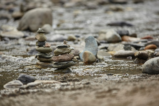 いくつかの岩の山が小川の水の流れを妨げています。