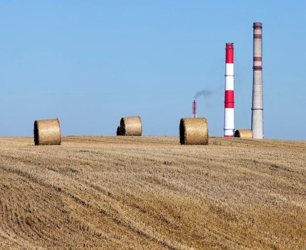 企業のバックグラウンド産業パイプラインのフィールド、風景、食品に危険な小麦のいくつかのスタック
