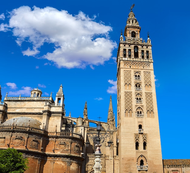 Seville cathedral giralda tower sevilla spain