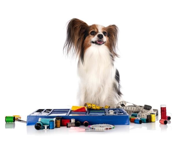 Швейная фурнитура и собачка