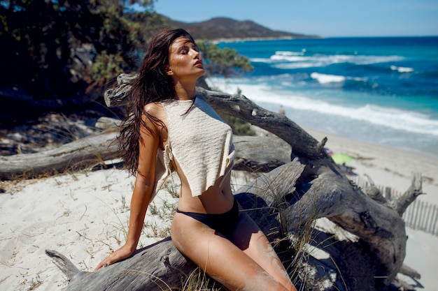 A sexy brunette woman with long hair posing on beach and siting on trunk of old tree, corsica island, france.