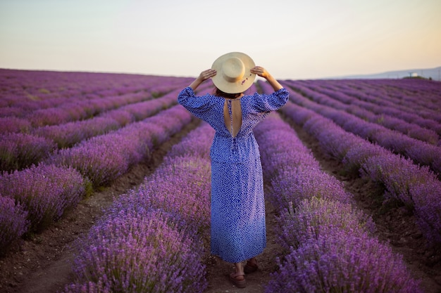 Sexy woman in a blue dress and a straw hat in blooming lavender fields at sunset enjoys nature